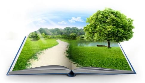 Ochrona środowiska - image environmental-policy on http://bqj.com.pl